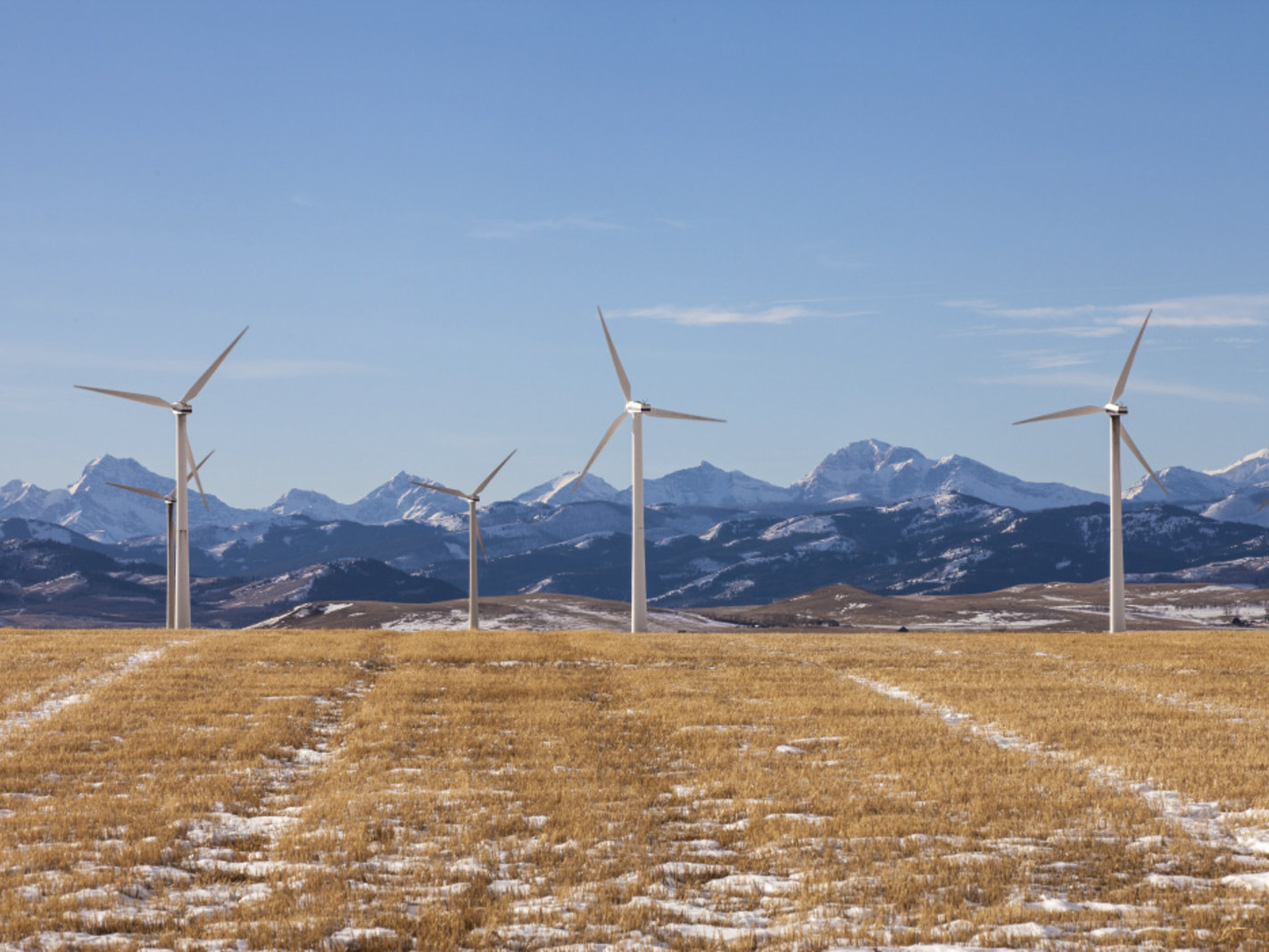 Lethbridge College wind turbines landscape panorama view